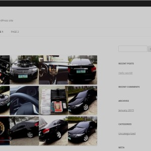 acf-gallery-featuring-front-end-display